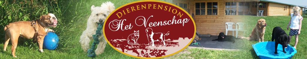 Dierenpension het Veenschap Vriezenveen | voor al uw honden, poezen en katten. Het Dierenpension voor Albergen, Aadorp, Almelo, Borne, Bornerbroek, De pollen, Delden, Enter, Fleringen, Geesteren, Harbrinkhoek, Hengelo (ov), Hertme, Hoge hexel, Mariaparochie, Saasveld, Tubbergen, Vriezenveen, Westerhaar, Wierden, Zenderen.